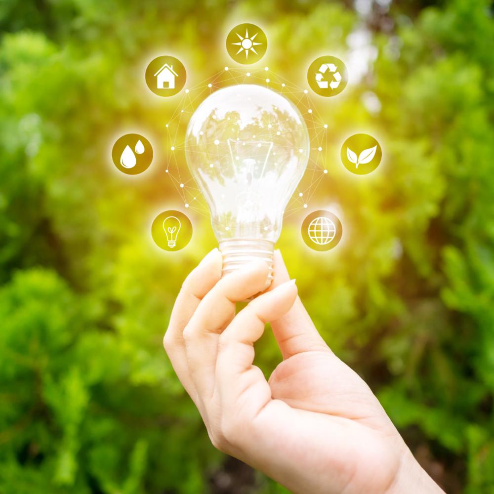 FAD - ECONOMIA DELL'EFFICIENZA ENERGETICA