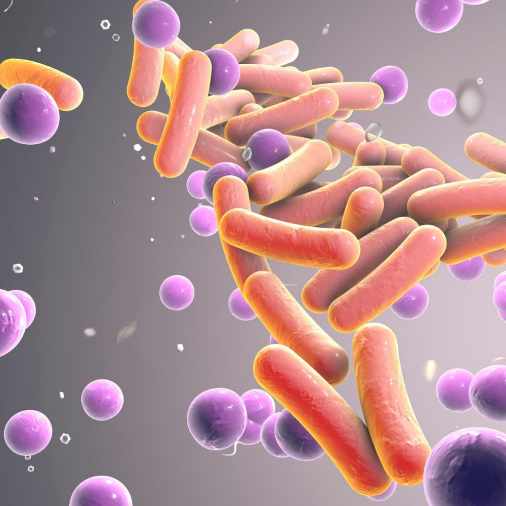 FAD - Legionella: prevenzione, gestione e strategie d'intervento